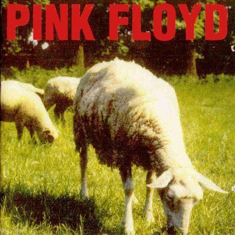 Sabias que.. Pink floyd Curiosidades [Imágenes]