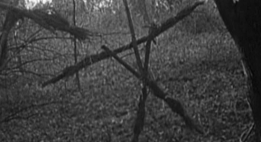BlairWitchProject-thumb-550x300-12916