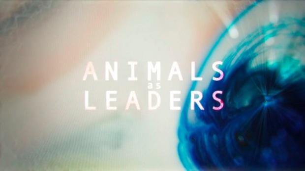 animalsasleaders-newalbum-2014-the-JOY-of-MOTION