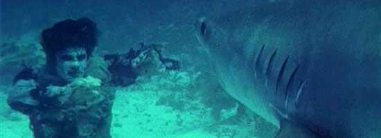 zombie-vs-shark