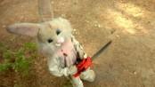 bunny3 (1)